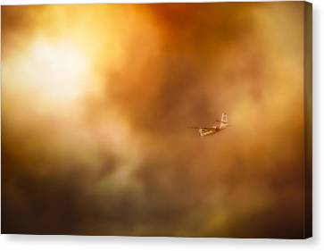 Into Hell Canvas Print by John Hamlon
