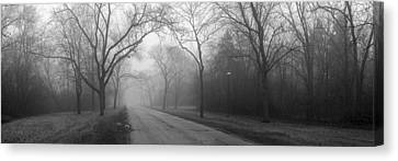 Into The Fog Canvas Print by David April
