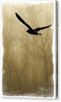 Canvas Print featuring the photograph Into The Fog by Harry Spitz
