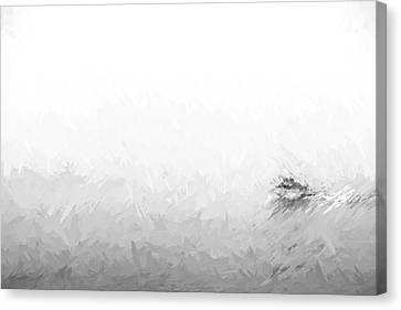 Into The Fog II Canvas Print by Jon Glaser