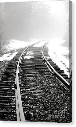 Into The Fog Canvas Print by Olivier Le Queinec