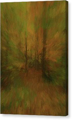 Reds Of Autumn Canvas Print - Into The Forest Autumn Abstract by Dan Sproul