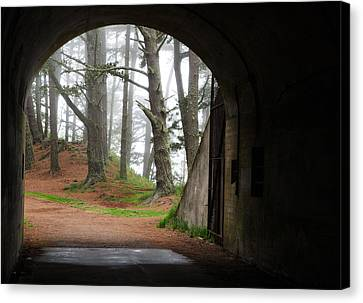 Into The Light Canvas Print by Eric Foltz
