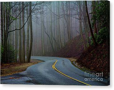 Into The Mist Canvas Print by Douglas Stucky