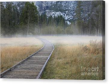 Canvas Print featuring the photograph Into The Mist by Sandra Bronstein
