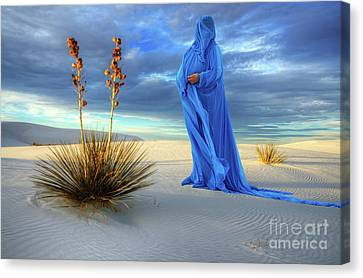 Into The Mystic 26 Canvas Print by Bob Christopher