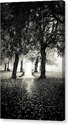 Fog Mist Canvas Print - Into The Unknown by Maggie Terlecki