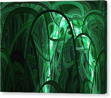 Into The Wilderness Canvas Print by Stefan Kuhn