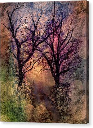 Into The Woods Canvas Print by Annette Berglund