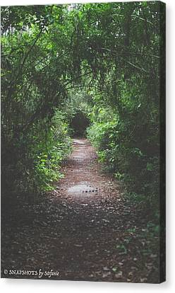 Into The Wormhole Canvas Print