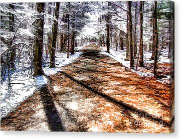 Canvas Print featuring the photograph Into Winter by Betsy Zimmerli
