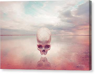 Introlevity Canvas Print by Joseph Westrupp