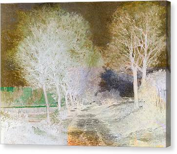 Inv Blend 4 Sisley Canvas Print by David Bridburg