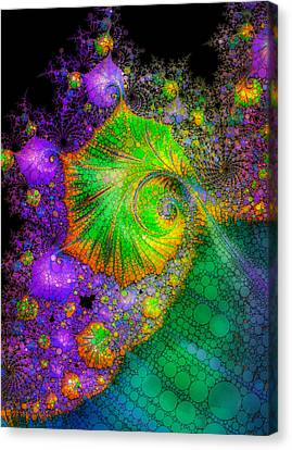 Investigating Fractals Two Canvas Print