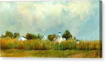 Iowa Cornfields Canvas Print