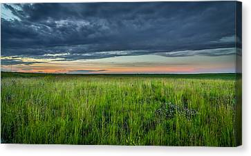 Iowa Landscape  Canvas Print