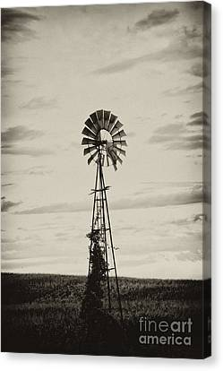 Iowa Windmill In A Corn Field Canvas Print by Wilma  Birdwell