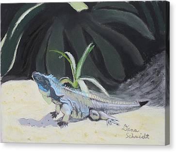Iquana Lizard At Sarasota Jungle Canvas Print