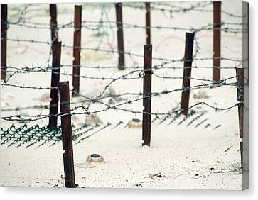 Iraqi Anti-personnel Mines And Barbed Canvas Print by Everett