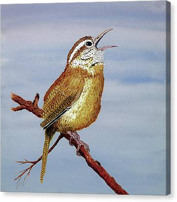 Canvas Print featuring the painting Irate Wren by Thom Glace