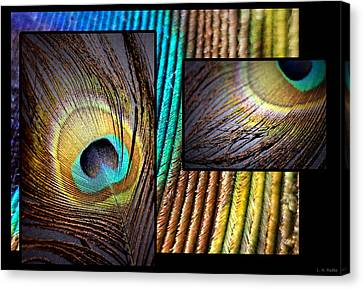 Iridescent Beauty Canvas Print by Lauren Radke