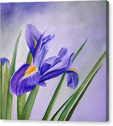 Canvas Print featuring the painting Iris by Allison Ashton