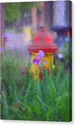 Iris And Fire Plug Canvas Print by David Lane