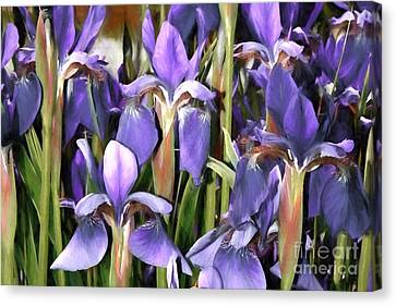 Canvas Print featuring the photograph Iris Fantasy by Benanne Stiens
