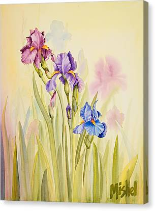 Iris Garden Ll Canvas Print