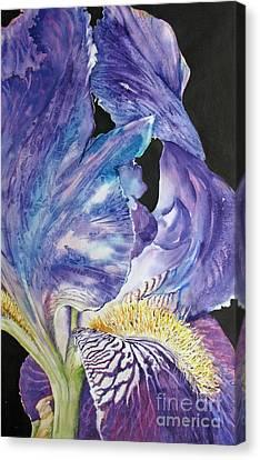 Iris-in-focus Canvas Print by Nancy Newman