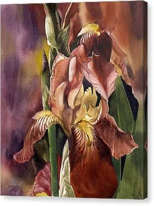 Iris In Red Canvas Print