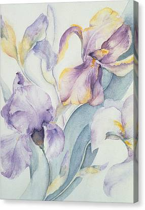 Iris Canvas Print by Karen Armitage