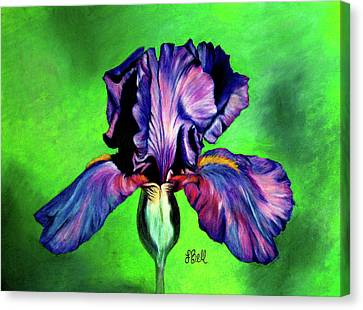 Iris Canvas Print by Laura Bell