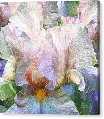 Iris Moods 3 Canvas Print