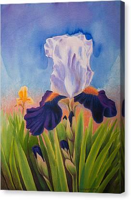 Iris Morning Canvas Print