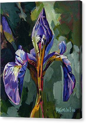 Iris Snow Canvas Print by Tim  Heimdal