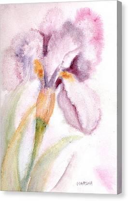 Iris Study I Canvas Print