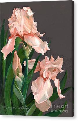Iris Study Canvas Print by Suzanne Schaefer