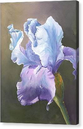 Canvas Print featuring the painting Iris Tears by Sherry Shipley