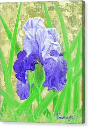 Iris Valor Canvas Print