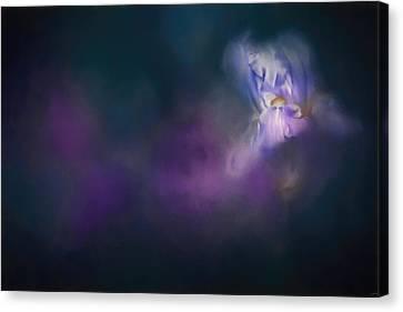 Iris Whisper Canvas Print by Jai Johnson