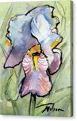 Iris With Impact Canvas Print by Ron Wilson