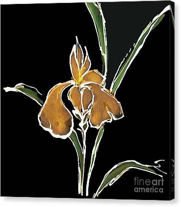 Iris-yellow Canvas Print