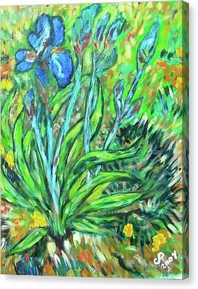 Irises Ala Van Gogh Canvas Print by Carolyn Donnell