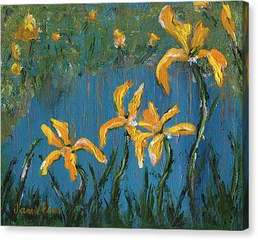 Canvas Print featuring the painting Irises by Jamie Frier