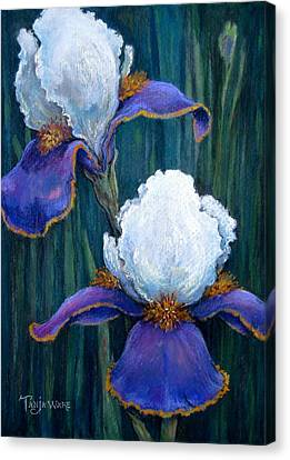 Irises Canvas Print by Tanja Ware