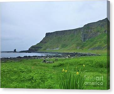 Irish Coastal Scene Canvas Print
