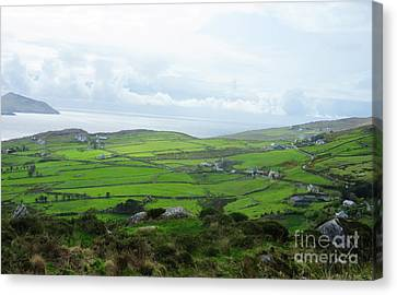 Irish Countryside 5 Canvas Print