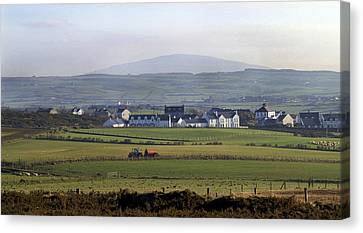 Irish Sheep Farm II Canvas Print by Henri Irizarri