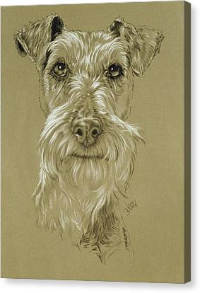 Irish Terrier Canvas Print by Barbara Keith